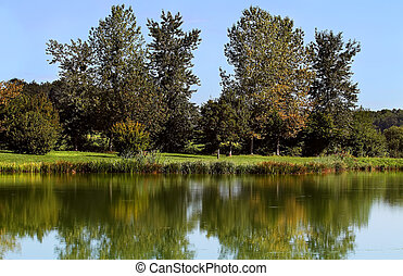 quiet lake - autumn, clean quiet lake on the banks of the...