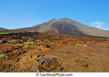 volcanic landscape in Teide National Park, Tenerife, Canary Islands, Spain
