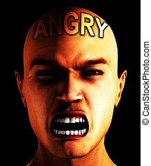 Mr Angry
