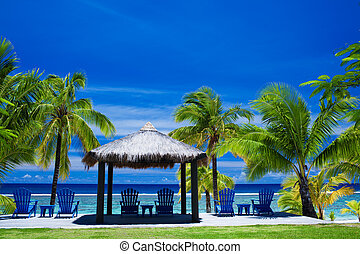Chairs on a beach front on amazing beach - Blue chairs on a...