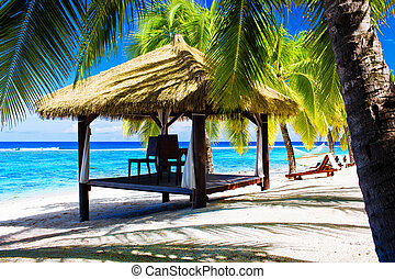 Tropical gazebo with chairs on a beach with palm trees -...