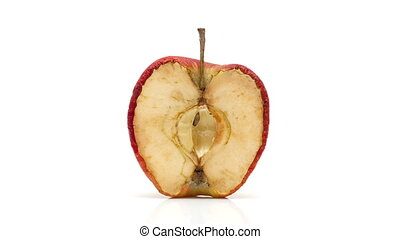 Timelapse of apple decaying - Apple shot on a Canon 5D over...