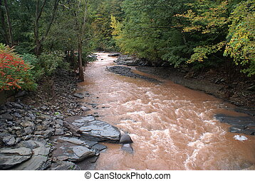 muddy water - after the floods upstate NY streams and rivers...
