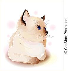 portrait of blue-eyed  little Siamese  kitten. Watercolor style.