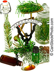 Herbs Rosemary and differnt santolina genus for medicine on...