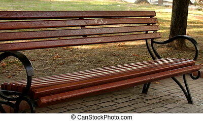 Newlyweds sat on the bench - The newlyweds sat down to rest...