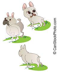 Three drawings of  French Bulldog