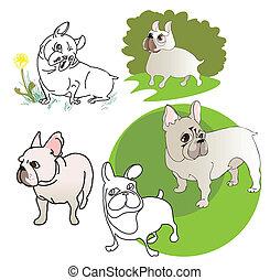 Five drawings of  French Bulldog