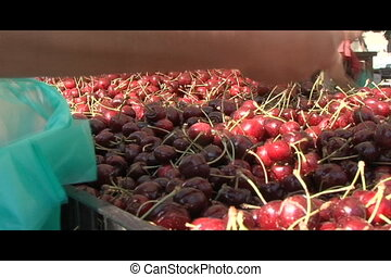 Cherries at Farmers Market - Close up video of cherries at a...