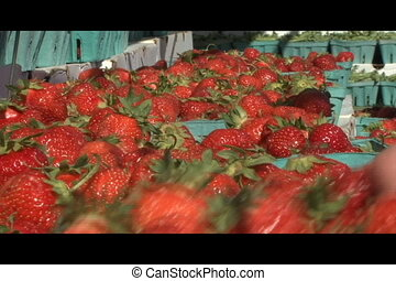 Strawberries at Farmers Market - Close up video of...