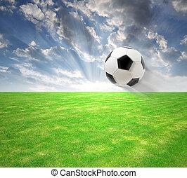 Flying soccer ball  - flying soccer ball on soccer field