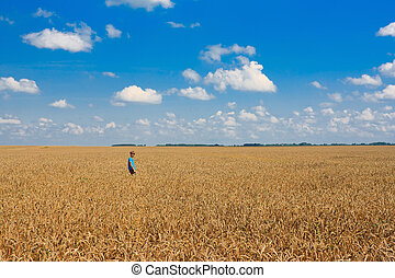 Boy on a big field of wheat