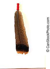 Headdress Turkey Feather