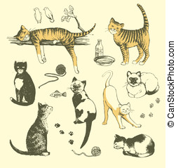 Cats - Vector art-illustration that represents the set of...