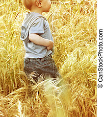Small baby boy walking through a grass field