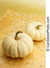 White miniature pumpkins - Two white miniature pumpkins on...