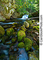 Waterfall on a Mountain Stream in the Forest