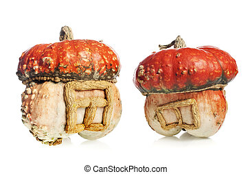 pumpkins  - decorative pumpkins on white background