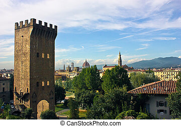 View of Firenze - Firenze tower and landscape