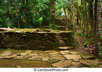 Old stone stairs and terraces in Ciudad Perdida, Colombia