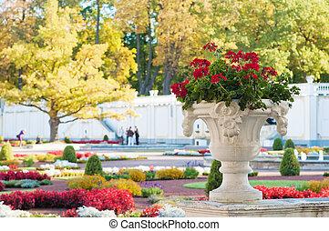 Flowerpot with flowers in autumn park