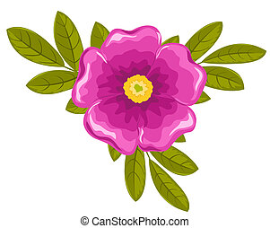 Dogrose flower and leaves. Vector illustration. Isolated on...