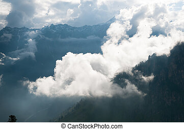Mountain peak shrouded in clouds - Mountain peak with trees...