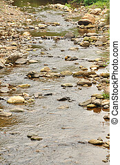 River - Clean and crystal clear river