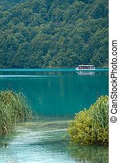 Lake - Beautiful landscape of a green lake