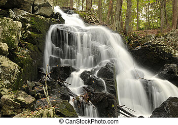 Prydden Brook Falls in Paugussett State Forest in Newtown,...