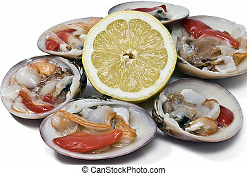 Smooth clams and lemon. - Fresh smooth clams isolated over a...
