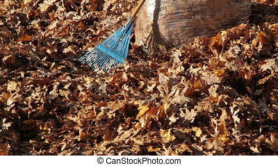Pan Down of Autumn Leaves in Bag with Rake