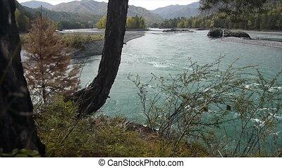 Altai river clean