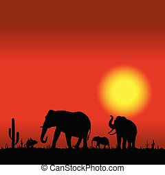 elephant family in desert black silhouette