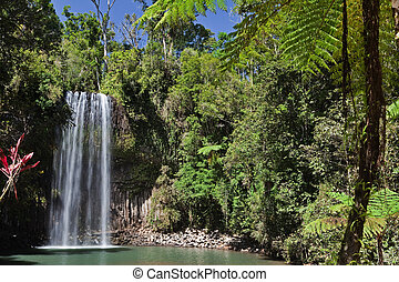 tree fern and waterfall in tropical rain forest paradise at...