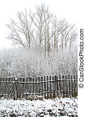 old gray fence in snow