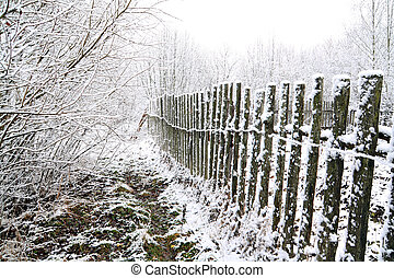 old fence in snow