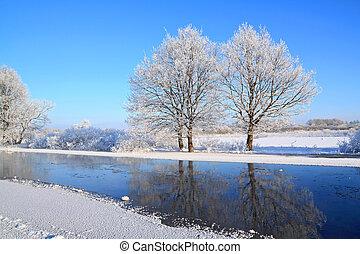 two oaks on coast river