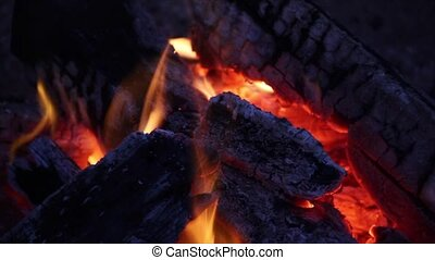 Woodfire Loop - Loop features a burning campfire with...