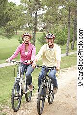 公園, 恋人, 自転車, シニア, 乗馬