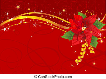 Christmas poinsettia background - Christmas background with...