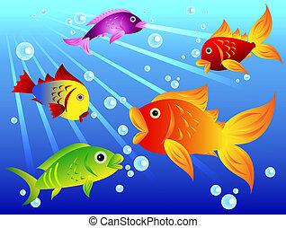 Fun colorful fish