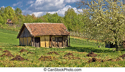 Springtime view on old traditional cottage made of wood and...
