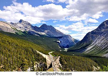 aerila view of Icefields Parkway - aerial view of Icefields...