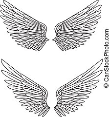 Wings - Vector illustration of wings