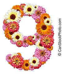 arabic numeral , nine