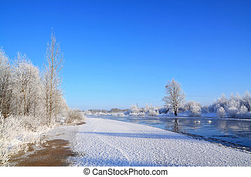 snow bushes on coast river