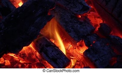 Burning Wood Fire Loop - Loop features a burning campfire...