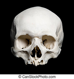Upper half of the real human Skull - real human Skull. Upper...