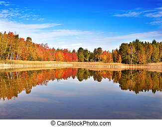 autumn landscape - an autumn colorful forest by the small...